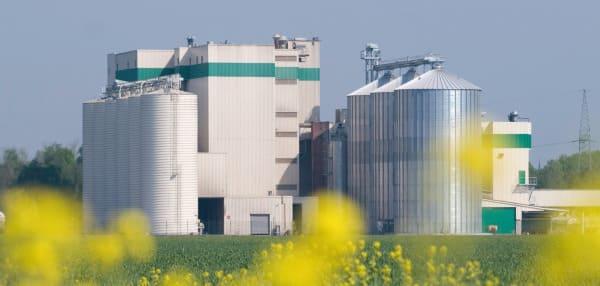 Neu bei Made in Dinklage: Wulfa-Mast GmbH