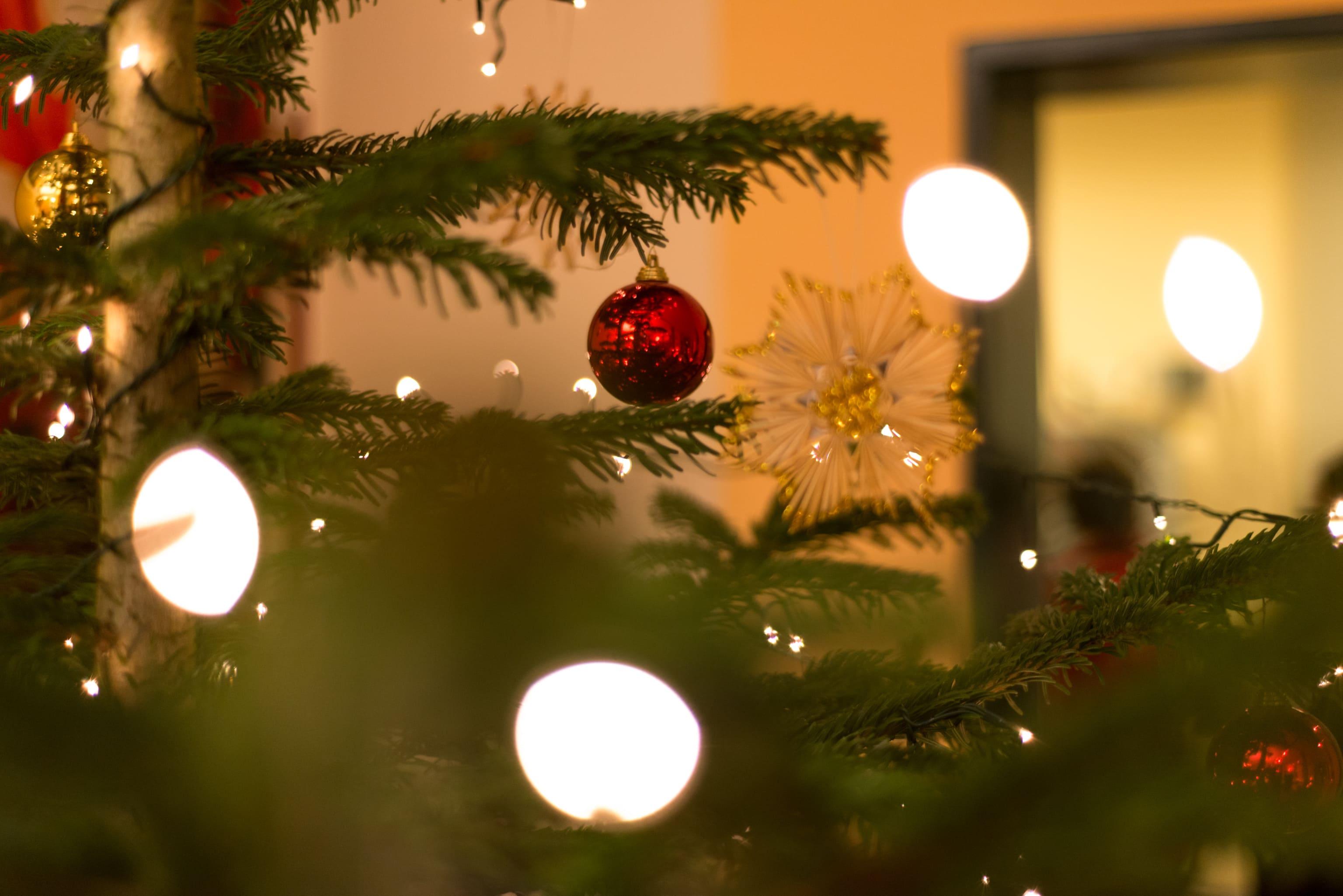 zu weihnachten ein gesundheitsgutschein made in dinklage. Black Bedroom Furniture Sets. Home Design Ideas